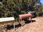 Relocated hives